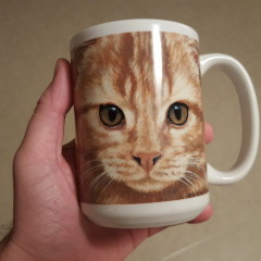 Review of This Mug with a Cat's Face on It