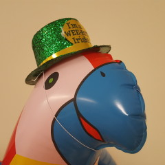 Review of This Inflatable Parrot Wearing an Irish Hat