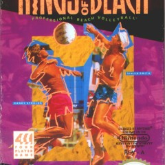 Kings of the Beach (NES) Review