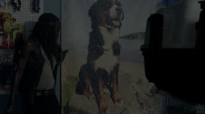 WD-S06E03-DogCloset