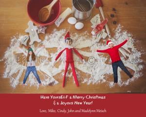 2014-Christmas-card-cindypic-blog-elfonshelf